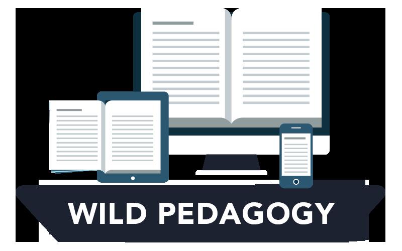 bob-henderson-wild-pedagogies